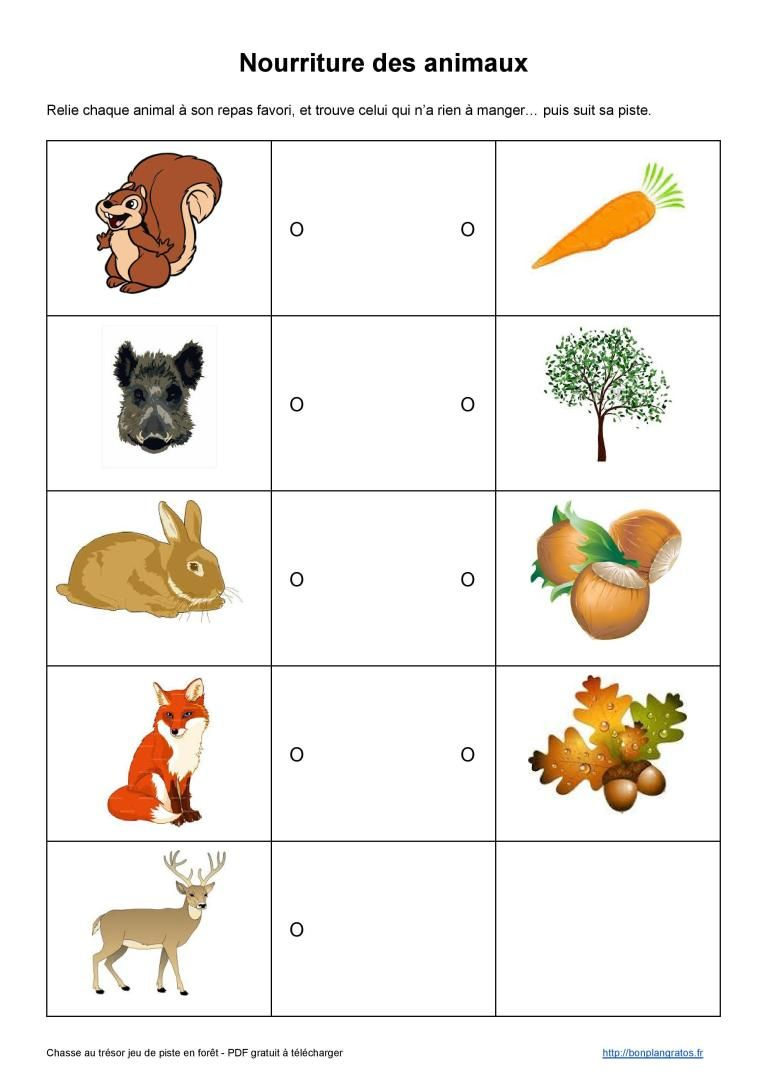 Nourriture Des Animaux | Chasse Aux Trésors Gratuite, Chasse destiné Jeux De Animaux Gratuit