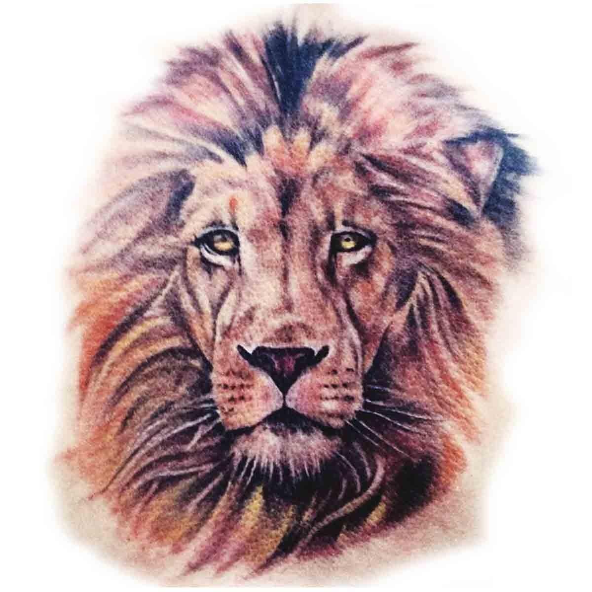 O Temporaire Tête De Lion Couleur à Photo De Lion A Imprimer En Couleur