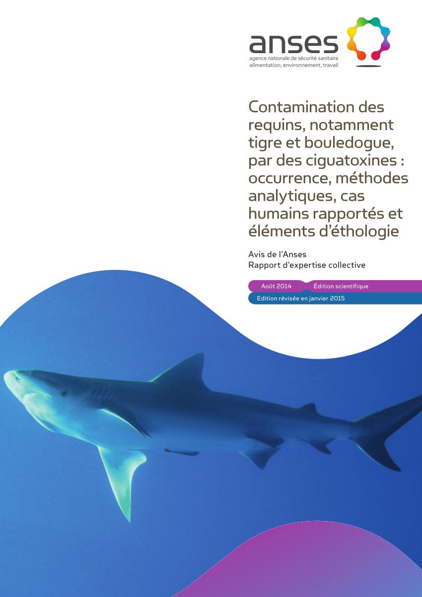 Pdf) Etat Des Connaissances Relatives À La Contamination Des tout Requin Souris