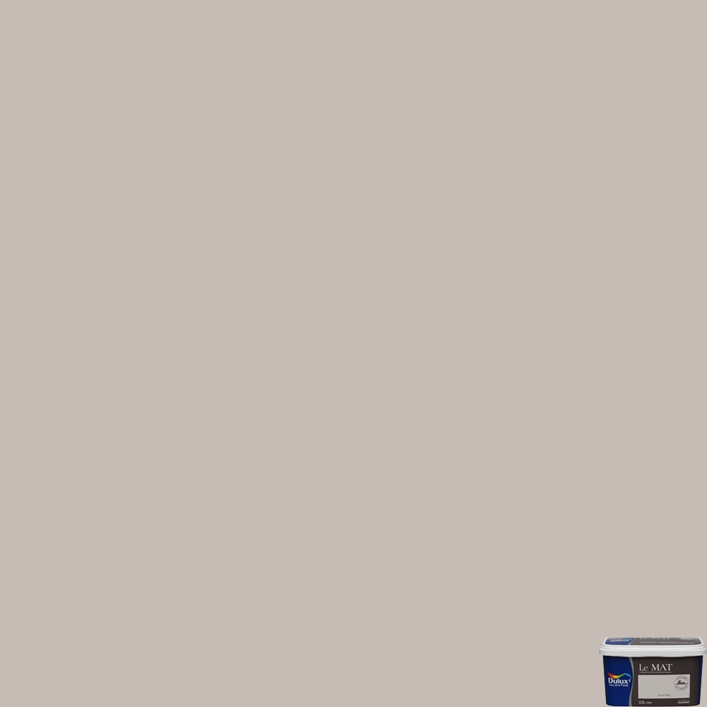 Peinture Le Mat Taupe Poudre 2,5L tout Code Couleur Taupe