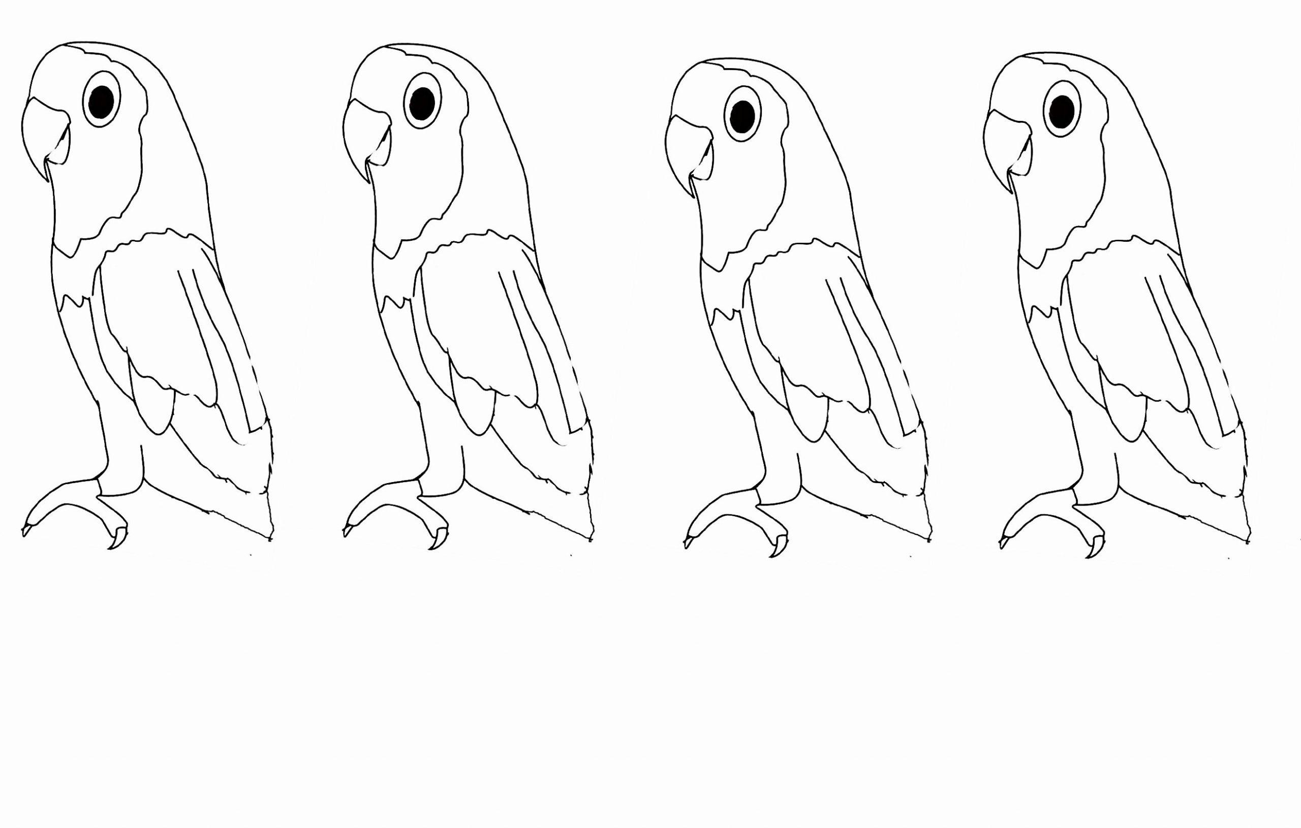 Perroquet #10 (Animaux) – Coloriages À Imprimer à Perroquet Coloriage A Imprimer