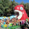 Poisson Rouge Gonflable- Pour Les Terrains De Jeux, Les destiné Jeux Du Poisson