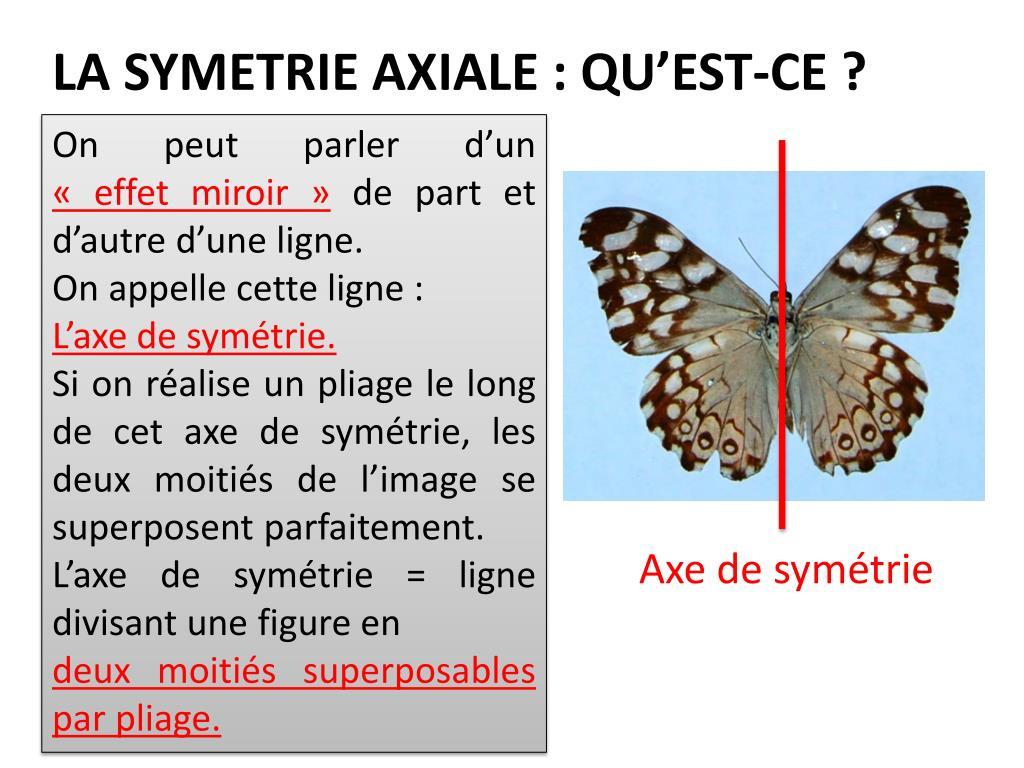 Ppt - La Symetrie Axiale : Qu'est-Ce ? Powerpoint intérieur Symétrie En Ligne