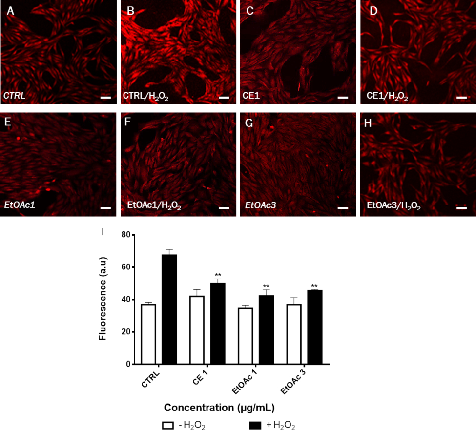 Protective Effect Of Rhus Coriaria Fruit Extracts Against destiné Reproduction De Figures Ce1