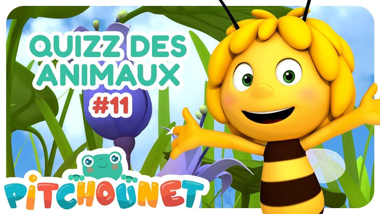 Quizz Des Animaux #11 | Dessin Animé Pour Enfant | Pitchounet pour Quizz Enfant