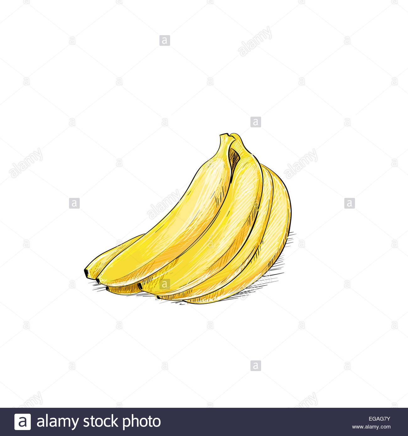 Régime De Bananes Couleur Croquis Dessiner Isolated Over dedans Dessiner Une Banane