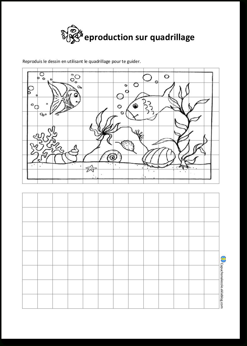 Reproduction Sur Quadrillage - Capuchon À L'école tout Reproduire Un Dessin Sur Quadrillage Cp