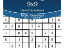 Sudoku Irregulier 9X9 Gros Caracteres - Facile A Diabolique - Volume 6 -  276 Grilles avec Sudoku Facile Avec Solution