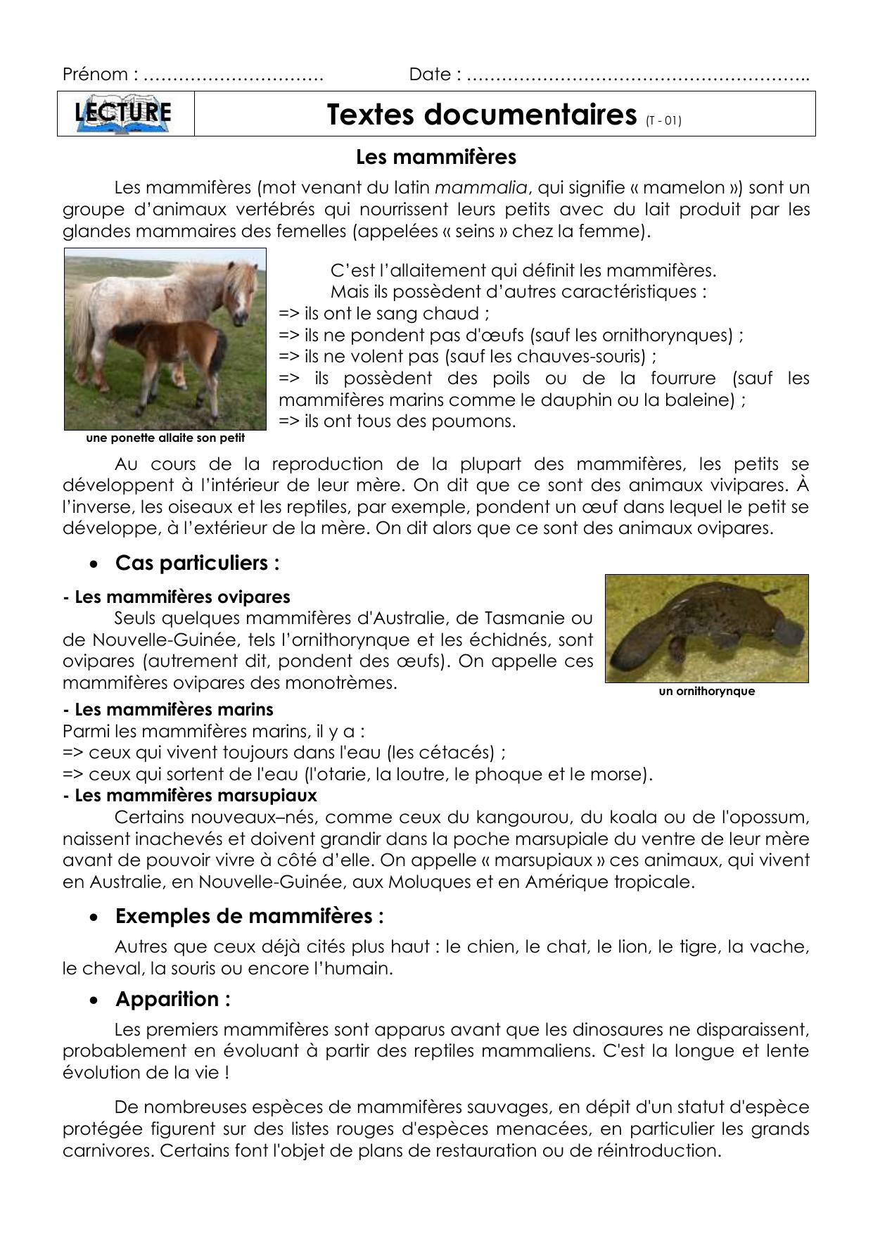 Tdt 01 concernant Animaux Ovipares Liste