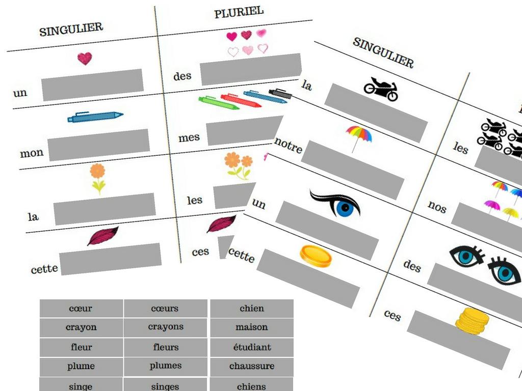 Un Jeu De Loto Sur Le Singulier Et Le Pluriel (Grammaire Et dedans Jeux De Concentration À Imprimer