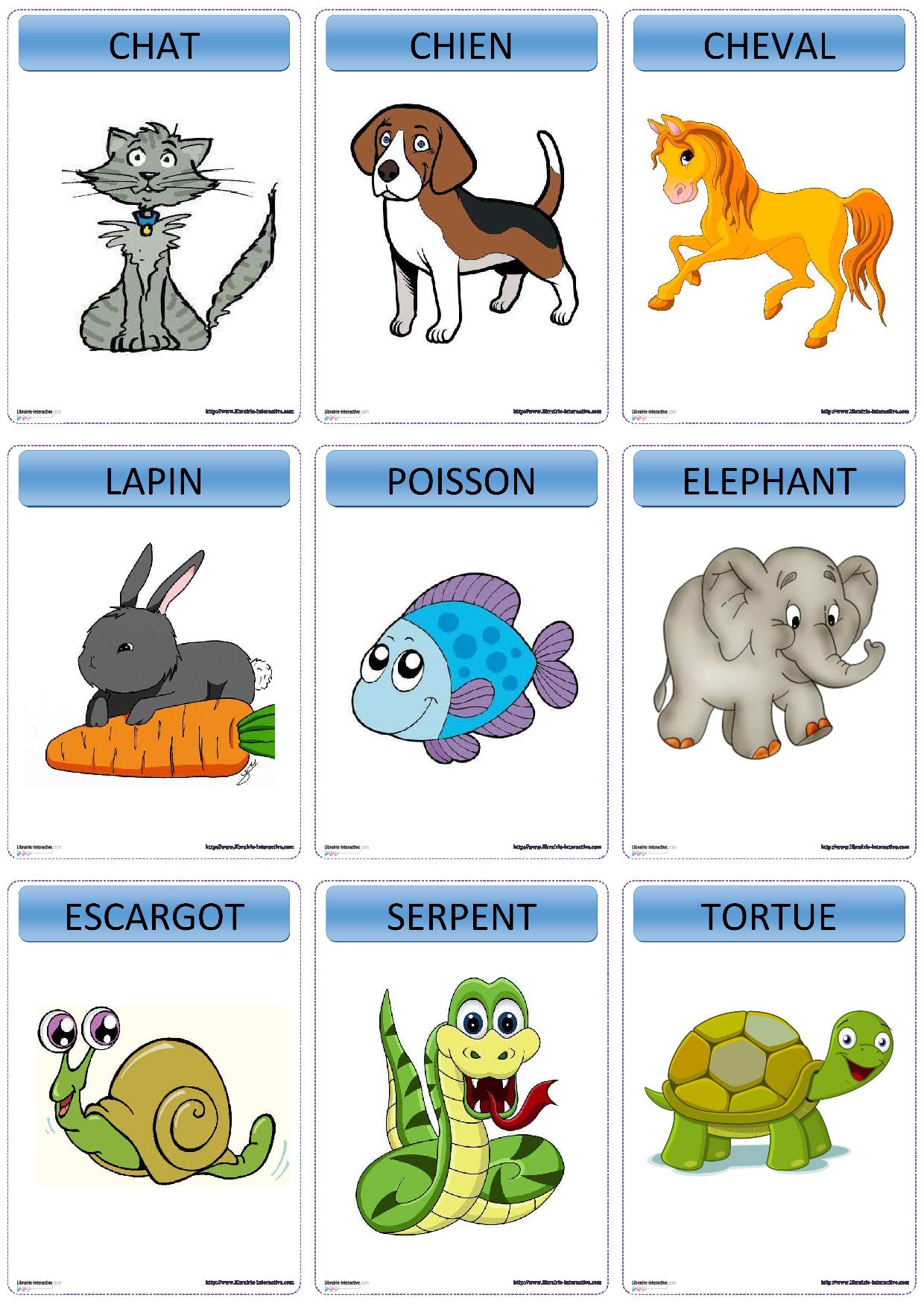 Une Version Du Célèbre Jeu Devine Tête Sur Le Thème Des tout Jeux Animaux Enfant