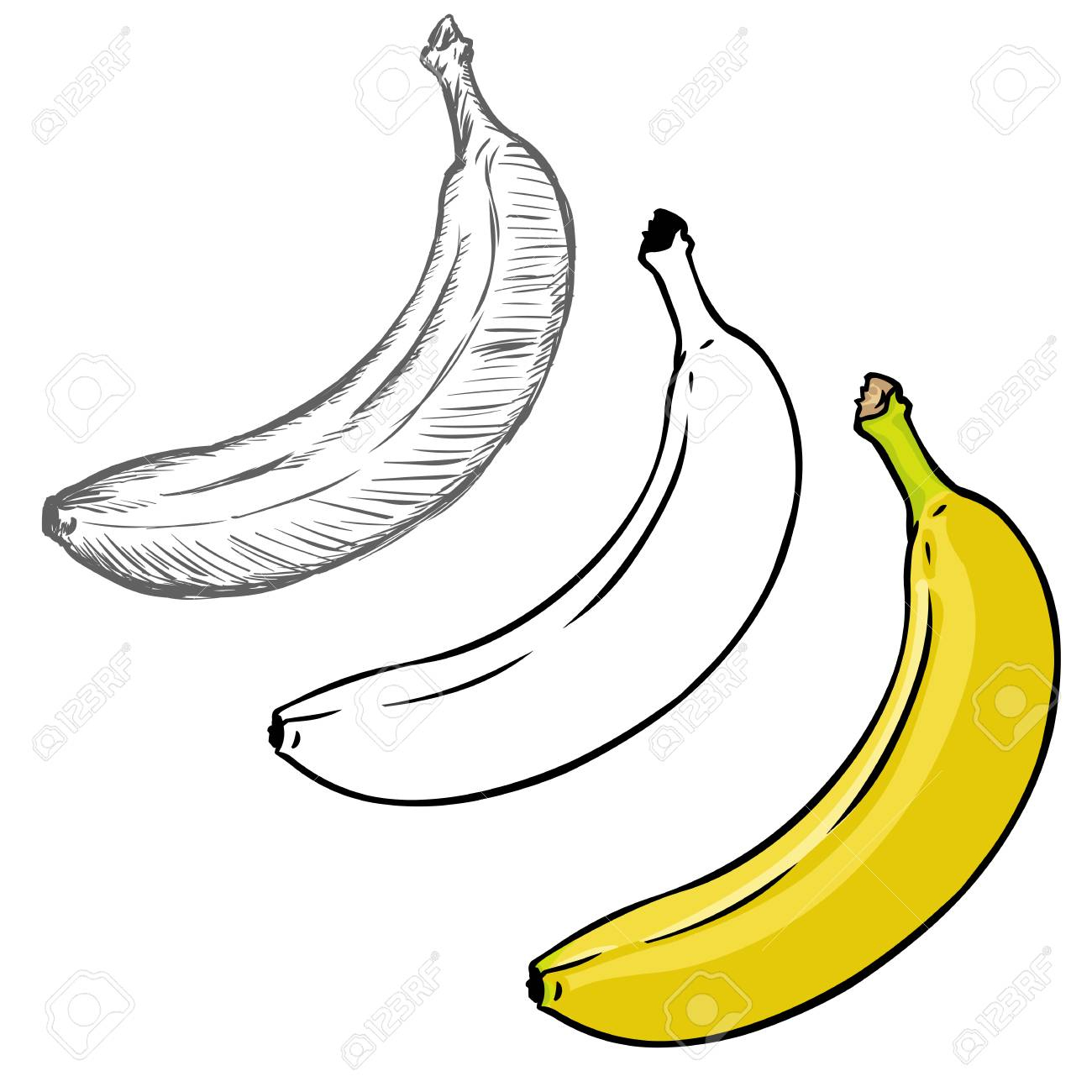 Vecteur Série De Bananes De Style Différente Illustration. Processus De  Dessin destiné Dessiner Une Banane