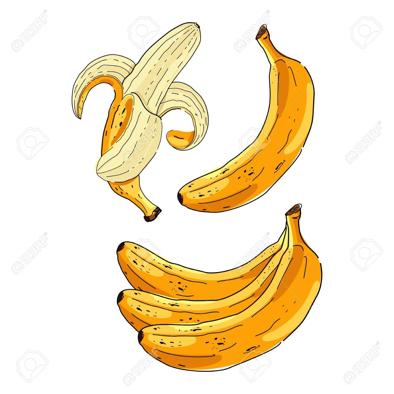 Vector Set De Dessin Animé Bananes Jaunes. Banane Trop Mûre, Banane Simple,  Banane Épluchée, Bouquet De Bananes. à Dessiner Une Banane