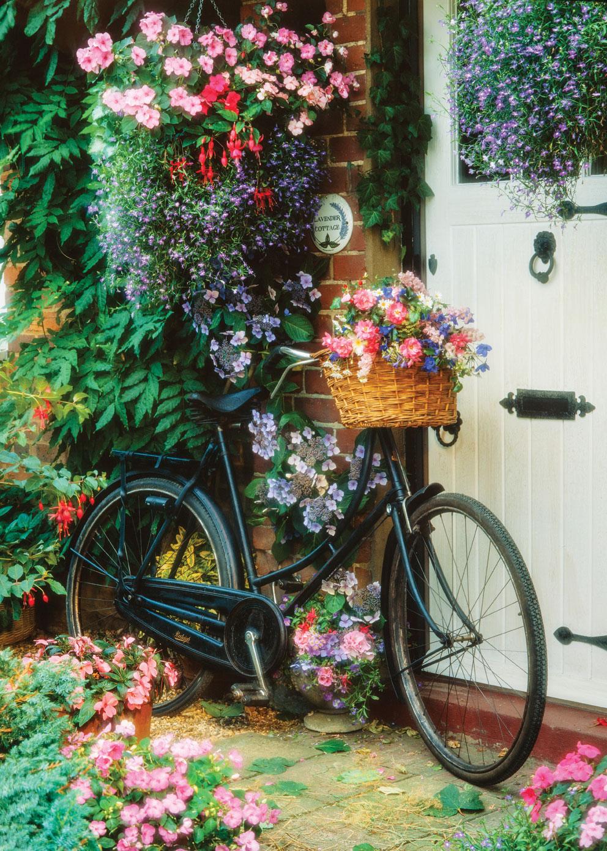 Vélo Et Fleurs - 500 Pièces Art Puzzle concernant Puzzles Adultes Gratuits