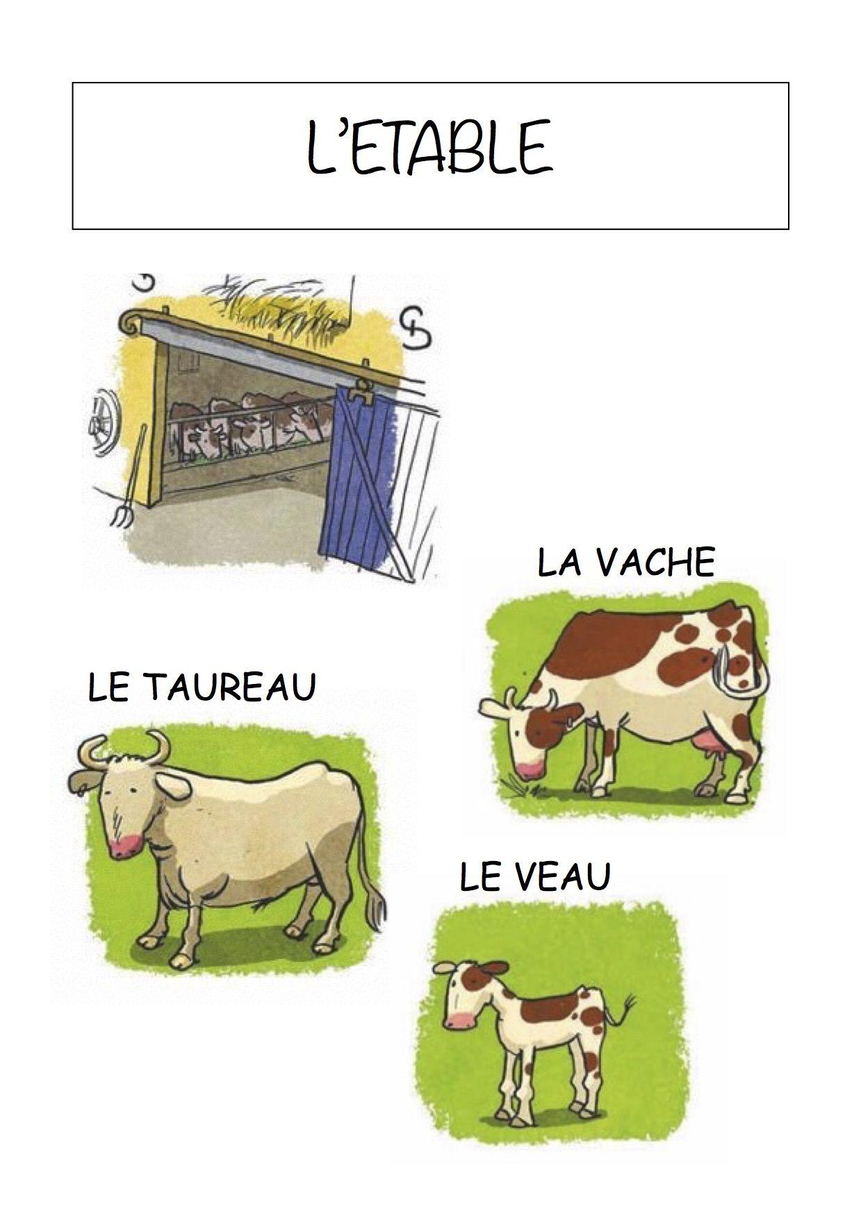 Vocabulaire De La Ferme Imagier Simple Pour La Maternelle serapportantà Bruit Des Animaux De La Ferme