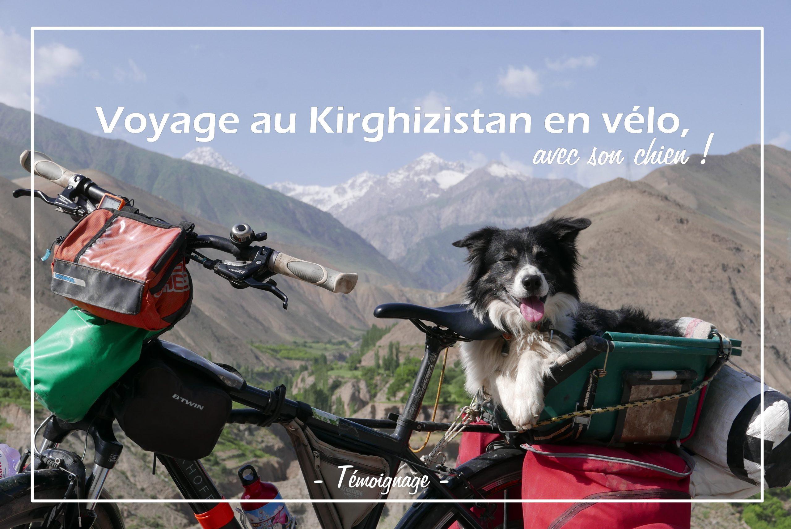 Voyage Au Kirghizistan En Vélo, Avec Son Chien! à Chien Qui Fait De La Luge