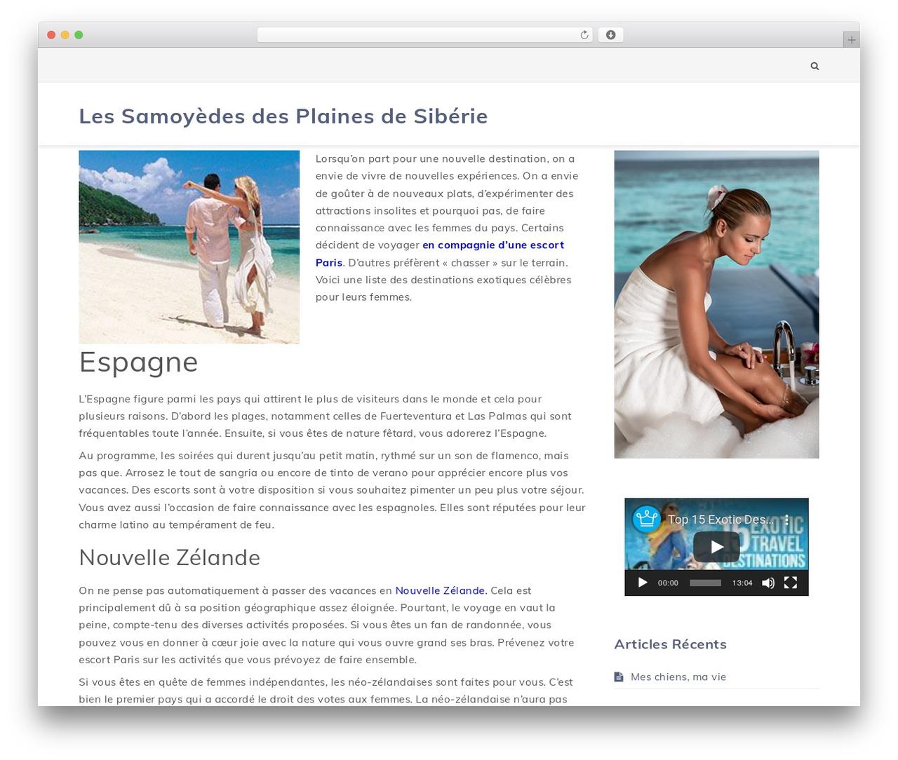 Wordpress Website Template Texton By Shark Themes à Site Pour Tout Petit